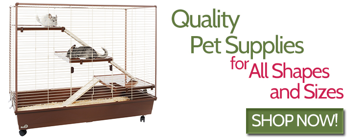 Quality Pet Supplies for shapes and sizes